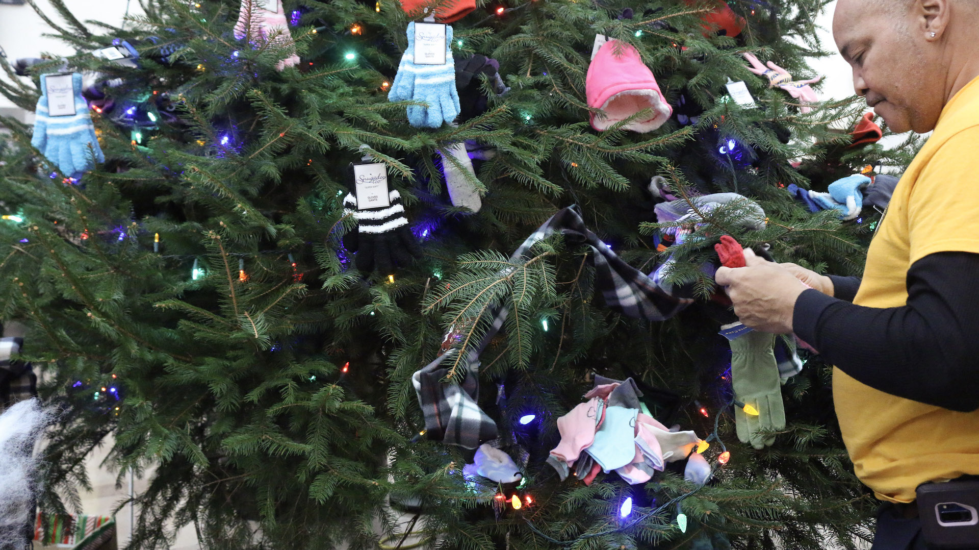 Donations on Christmas tree